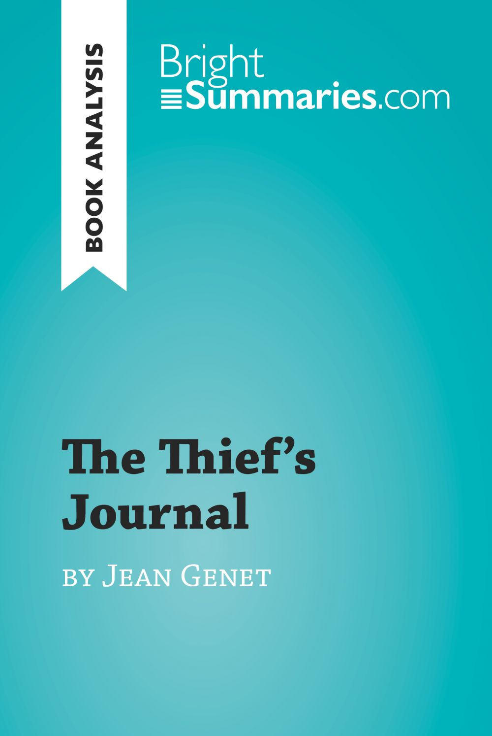The Thief's Journal by Jean Genet (Book Analysis)