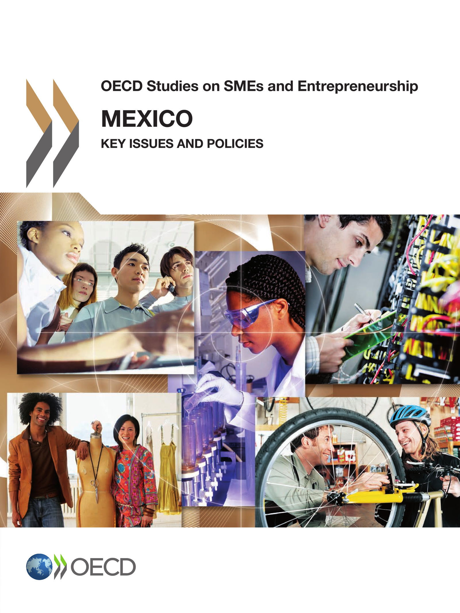 Mexico: Key Issues and Policies