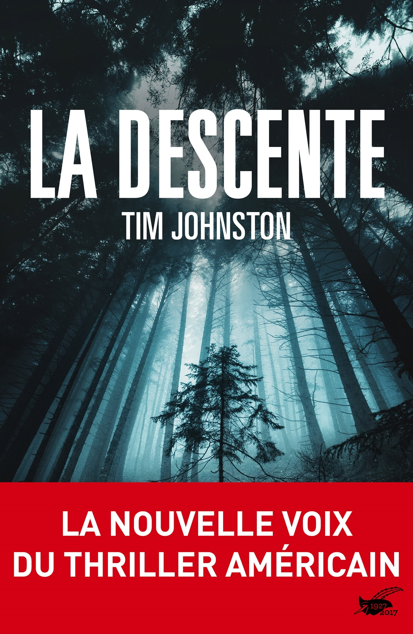 La descente | Johnston, Tim