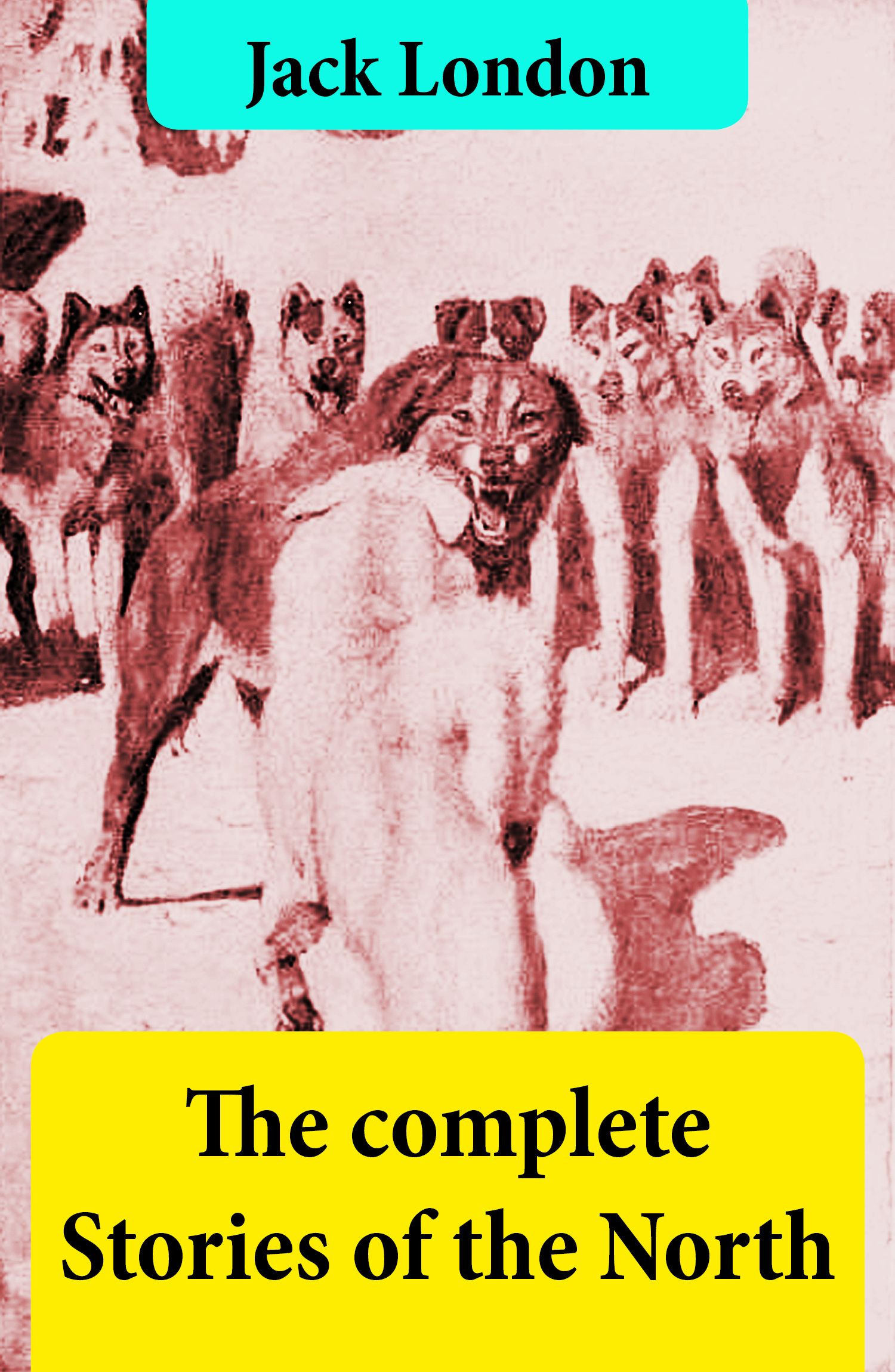 The complete Stories of the North