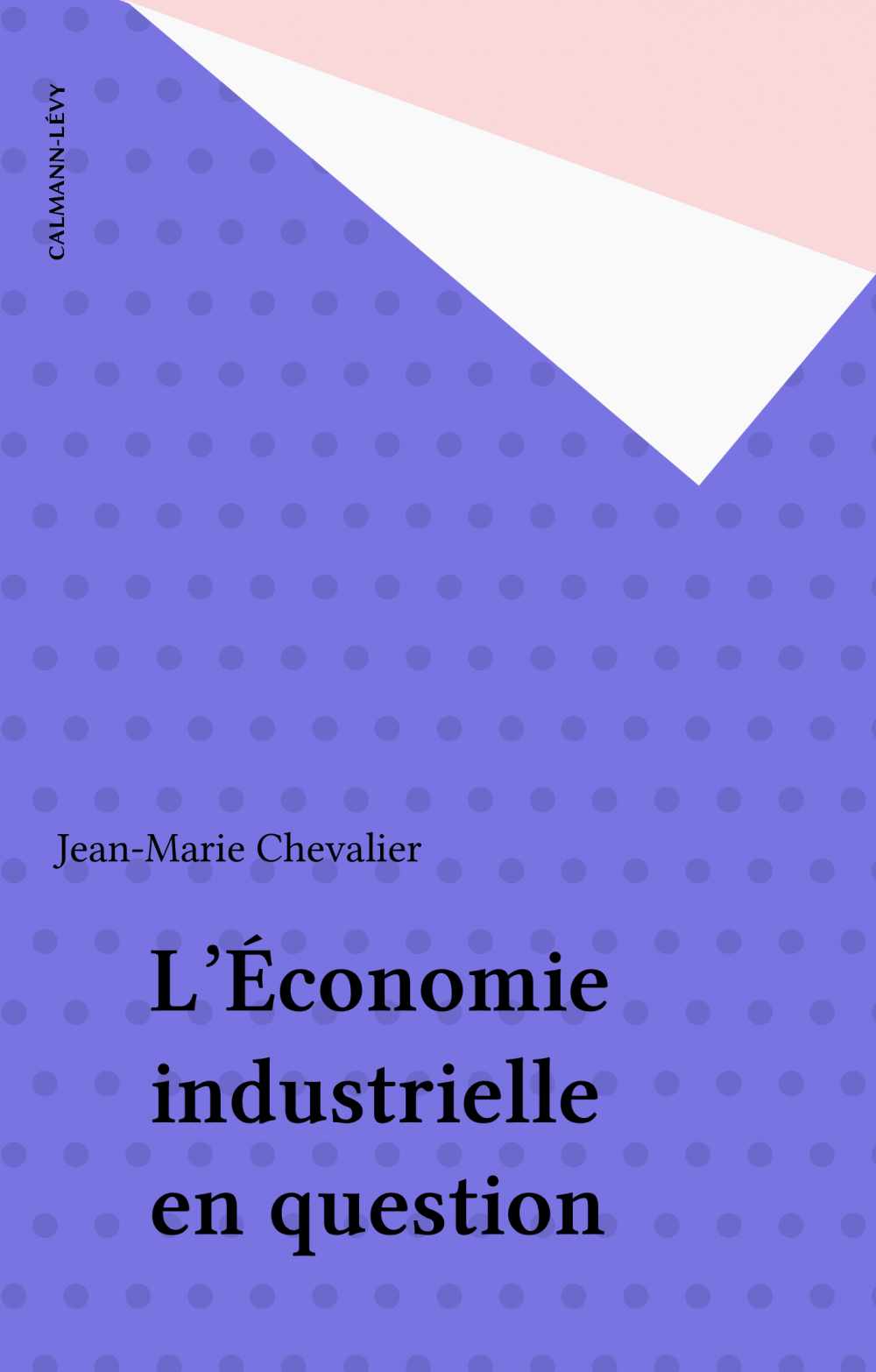 L'Économie industrielle en question