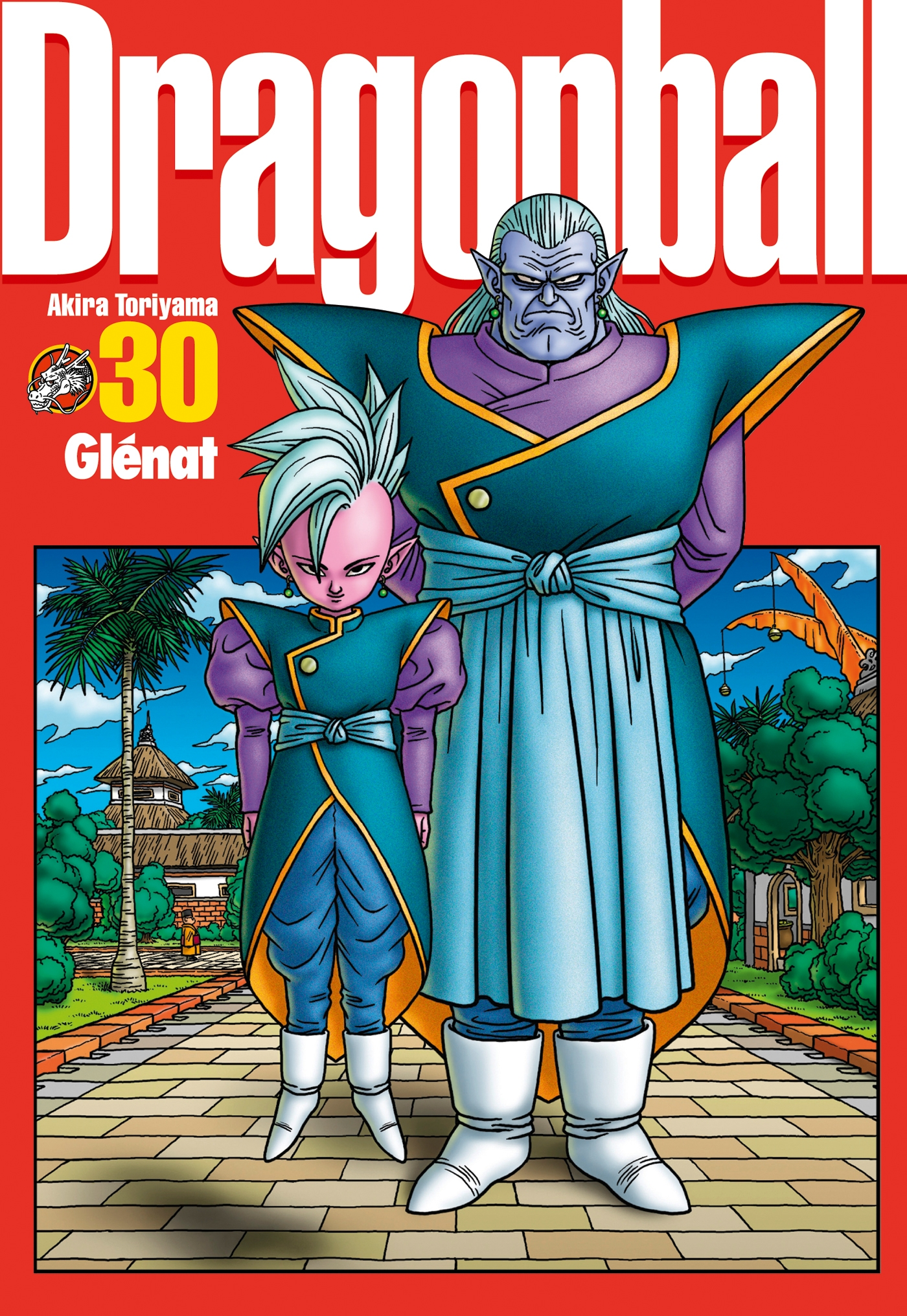 Dragon Ball perfect edition - Tome 30