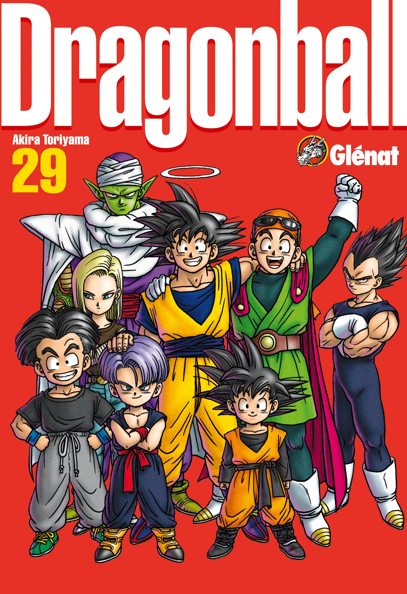 Dragon Ball perfect edition - Tome 29