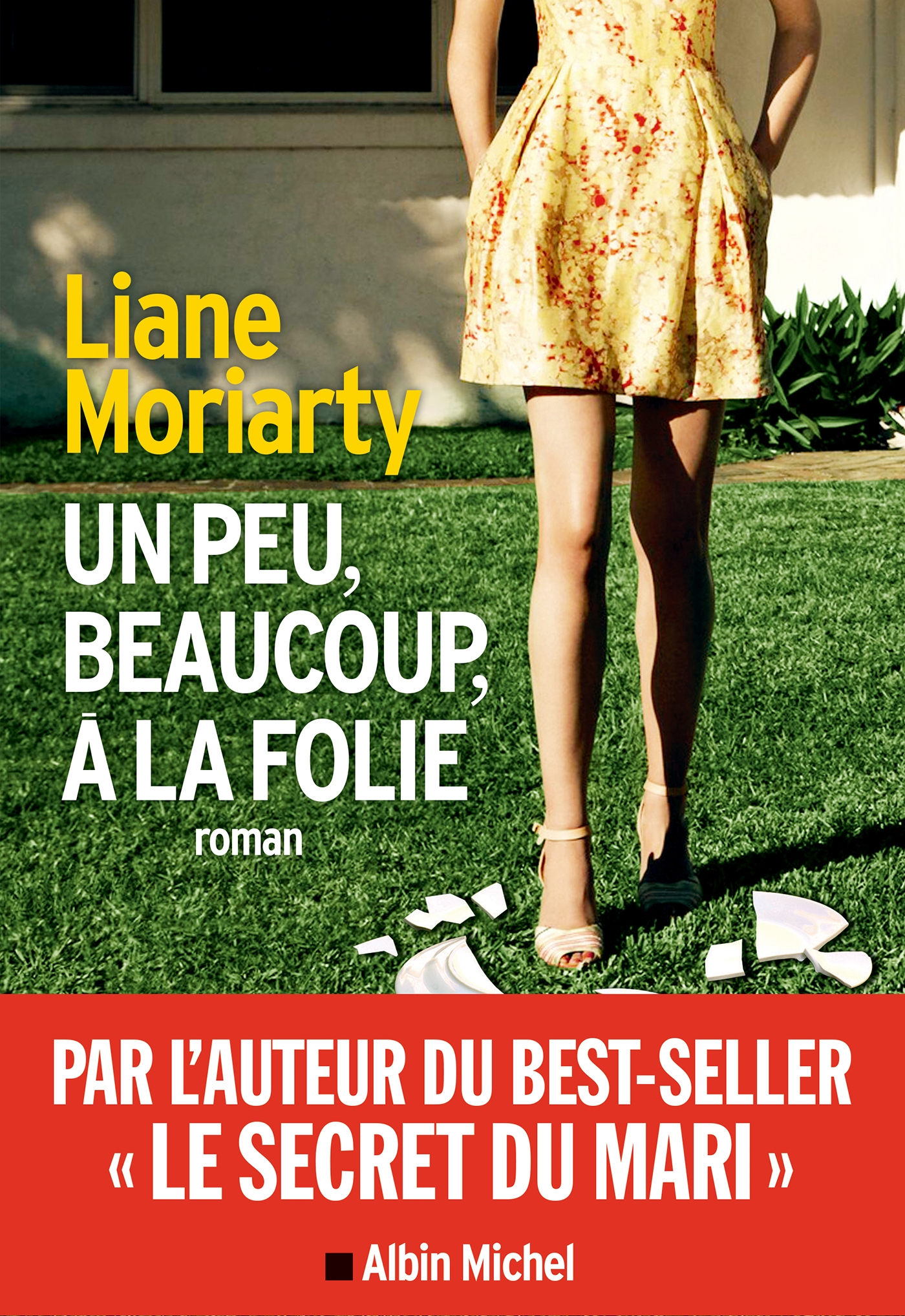 Un peu, beaucoup, à la folie | Moriarty, Liane
