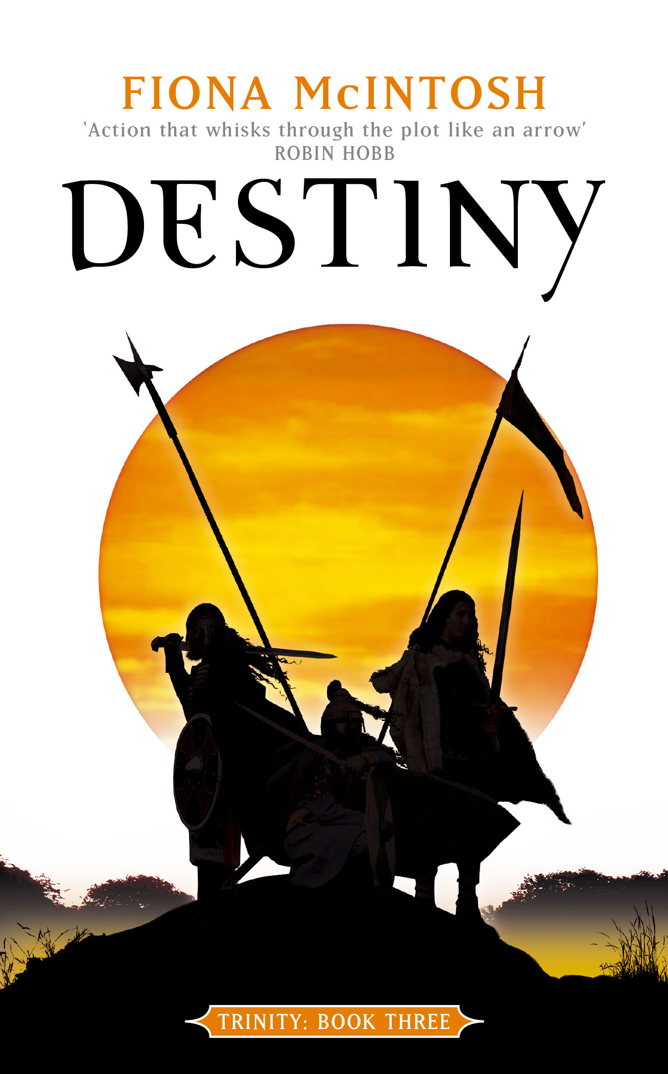 Destiny: Trinity Book Three