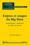 Enjeux et usages du Big Data