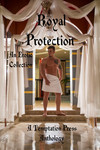 Royal Protection: An Erotic Collection