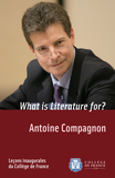 What is Literature for?