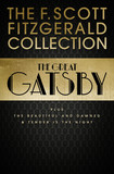 F. Scott Fitzgerald Collection: The Great Gatsby, The Beautiful and Damned and Tender is the Night