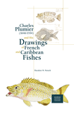 Charles Plumier (1646-1704) and His Drawings of French and Caribbean Fishes