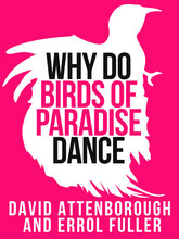 David Attenborough's Why Do Birds of Paradise Dance