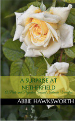 A Surprise at Netherfield: A Pride and Prejudice Sensual Intimate Novella