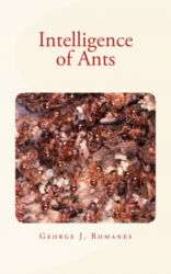 Intelligence of Ants