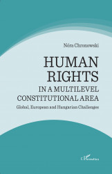 Human rights in a multilevel constitutional area