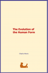 The Evolution of the Human Form