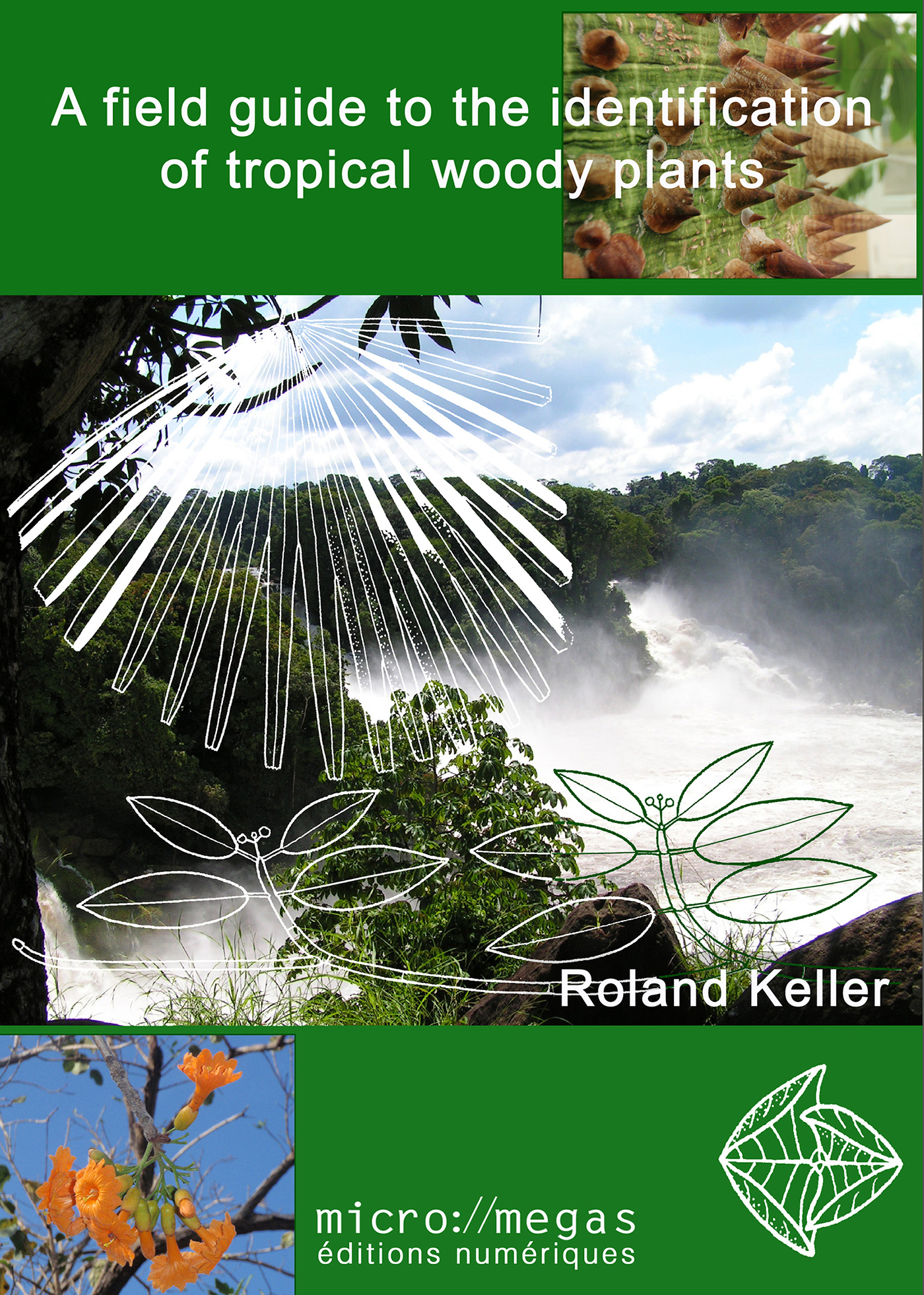 A Field Guide to the Identification of Tropical Woody Plants