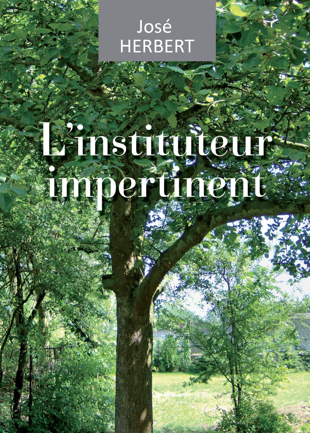 L'instituteur impertinent