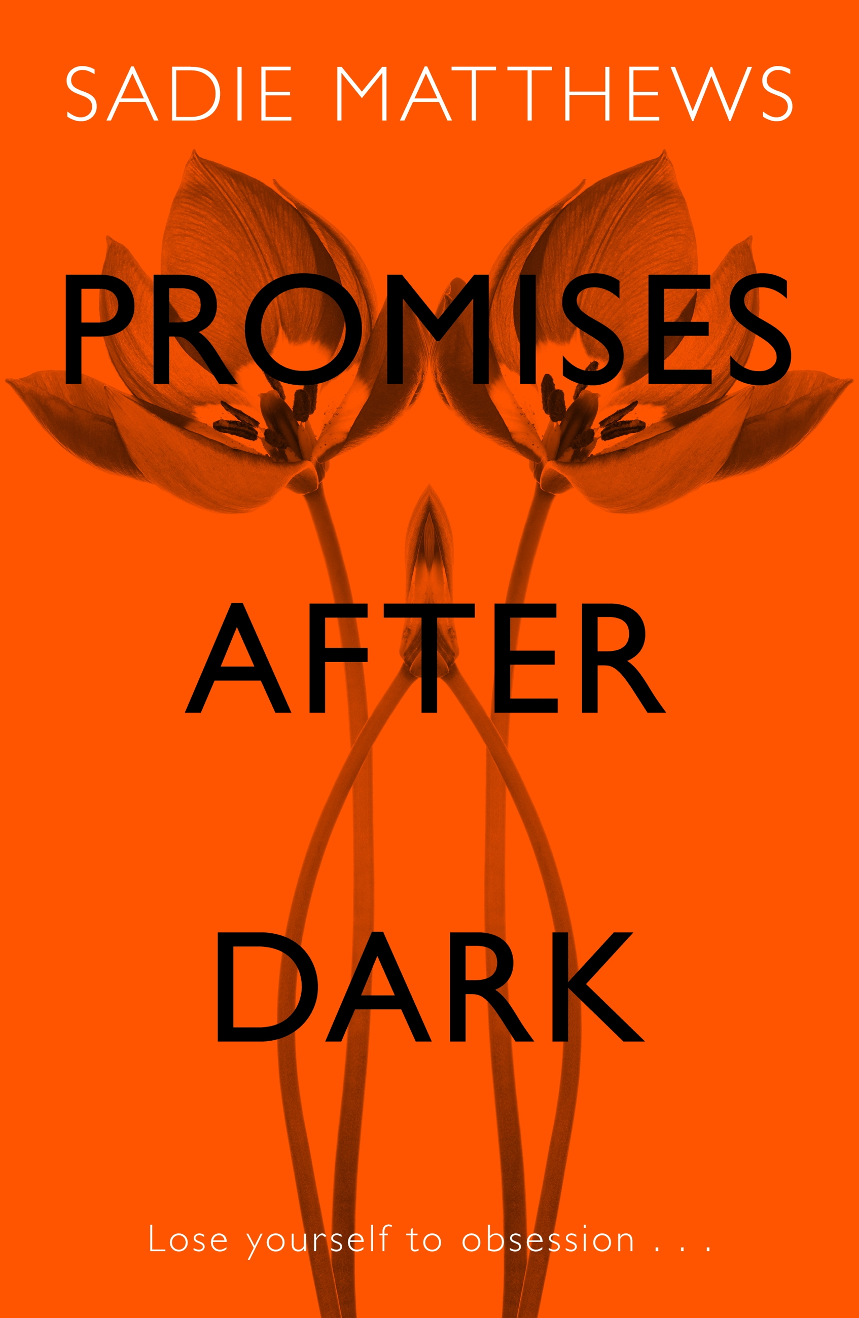 Promises After Dark (After Dark Book 3)