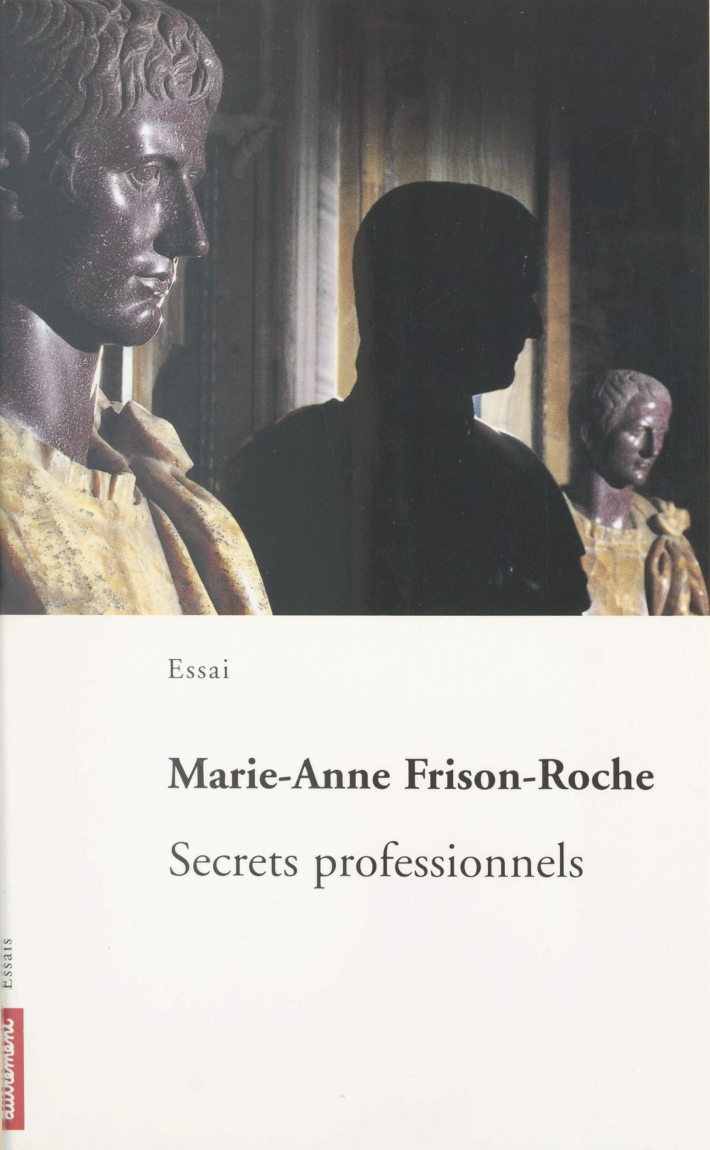 Secrets professionnels