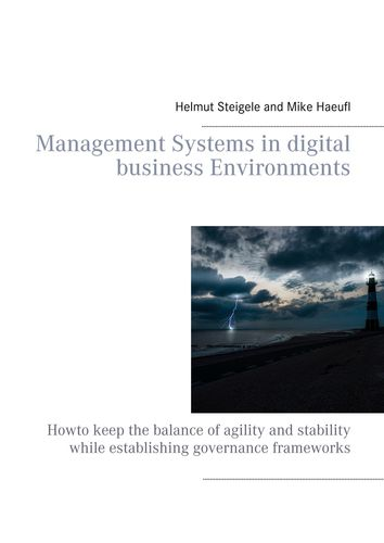 Management Systems in digital business Environments