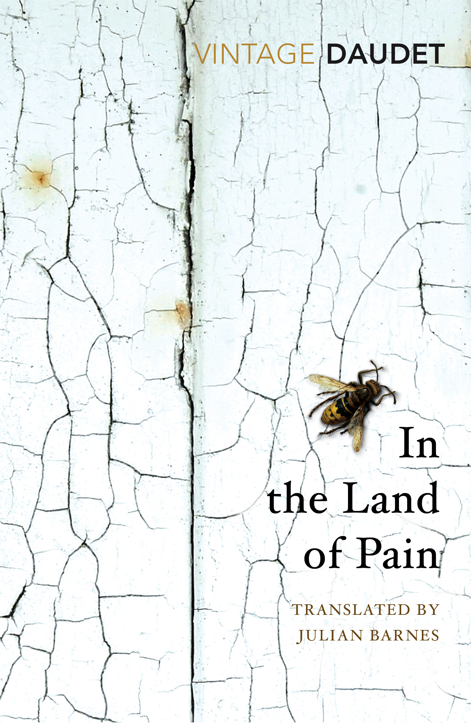 In the Land of Pain
